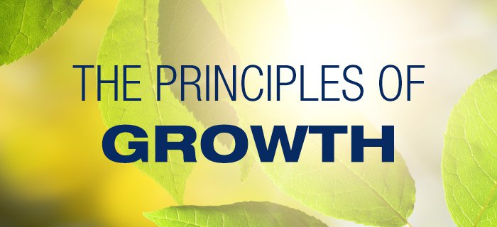 The Principles Of Growth poster