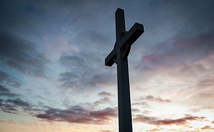 The Cost of Avoiding theCross Poster