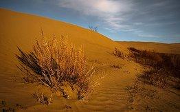 Poster for Finding God In Your Desert