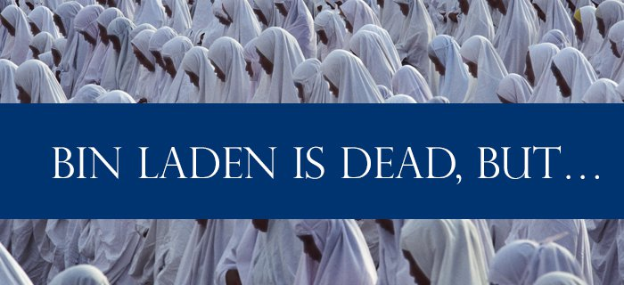 Bin Laden Is Dead, But… poster