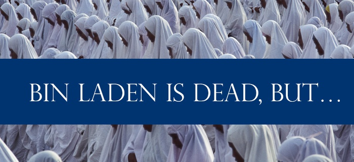 Bin Laden is Dead, but… poster