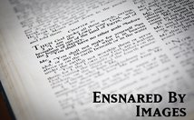 Ensnared By Images Poster