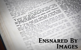 Poster for Ensnared By Images
