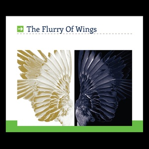 The Flurry ofWings