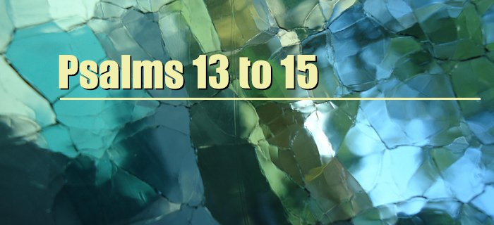 Psalms 13 to 15 poster