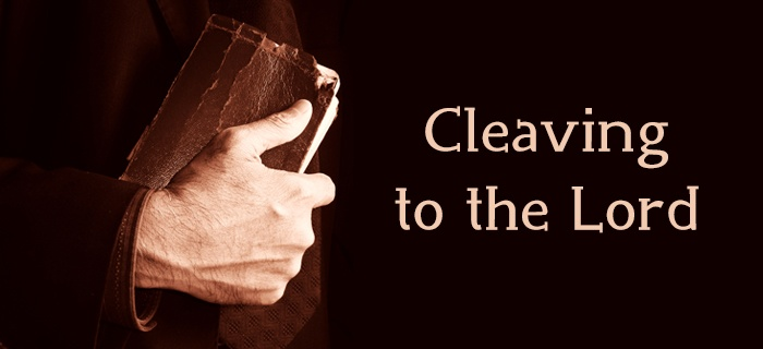 Cleaving to the Lord poster