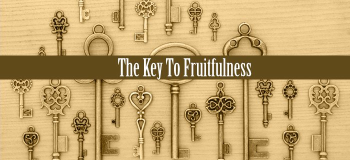 The Key To Fruitfulness poster