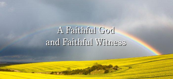 A Faithful God and Faithful Witness poster