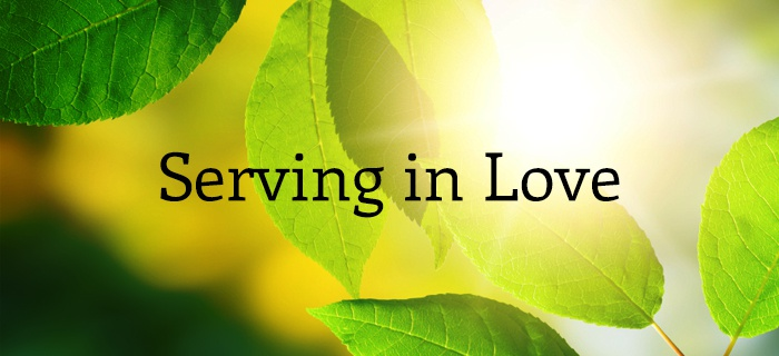 Serving in Love poster