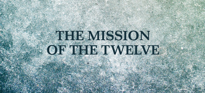 The Mission Of The Twelve poster