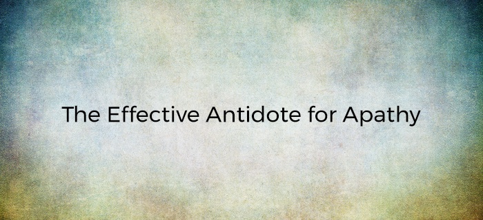 The Effective Antidote for Apathy poster