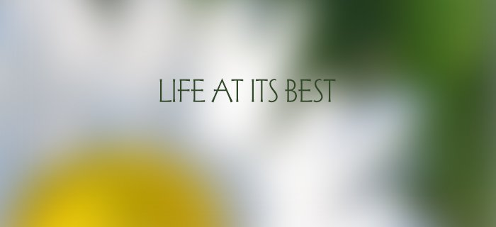 Life At Its Best poster