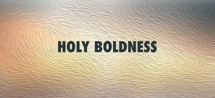 Holy Boldness poster