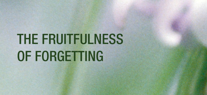 The Fruitfulness of Forgetting poster