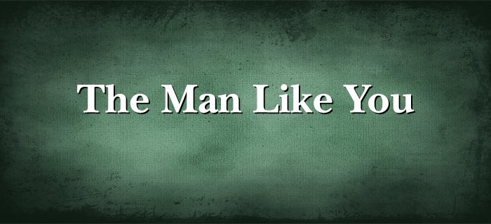 The Man Like You poster