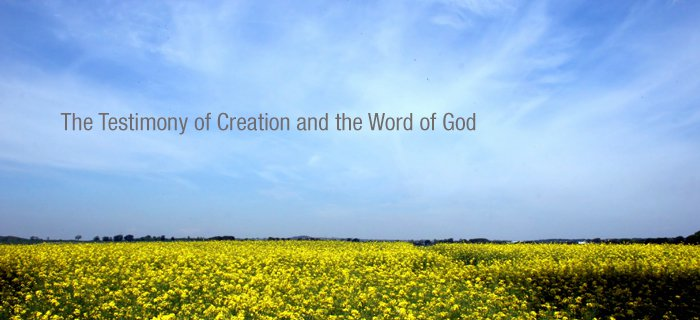The Testimony Of Creation And The Word Of God poster
