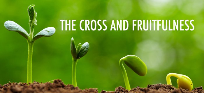 The Cross And Fruitfulness poster