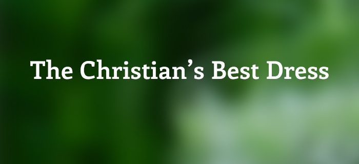 The Christian's Best Dress poster
