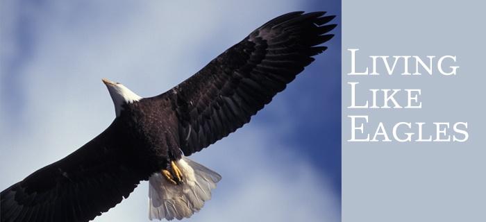 Living Like Eagles poster