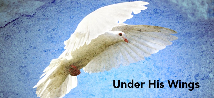 Under His Wings poster