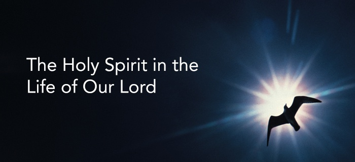 The Holy Spirit in the Life of Our Lord poster