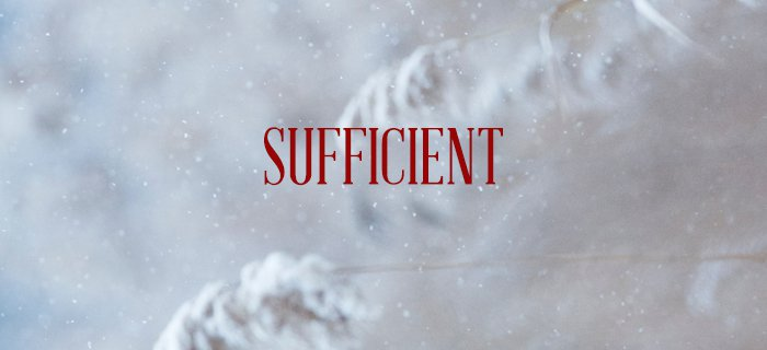 Sufficient poster