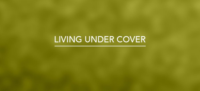 Living Under Cover poster