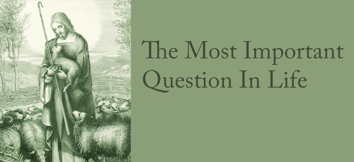 The Most Important Question In Life poster