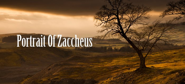 Portrait Of Zaccheus poster