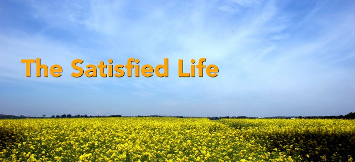 The Satisfied Life poster